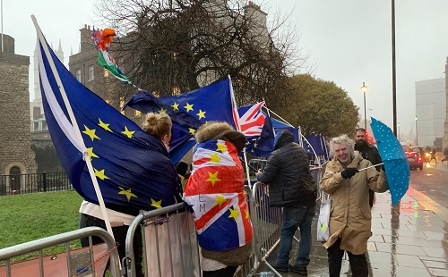 brexit crowd