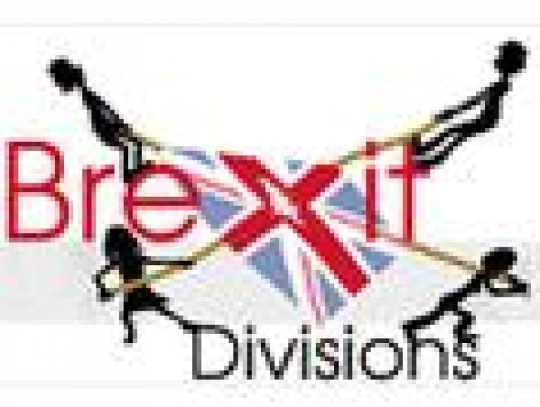 Brexit Divisions 1