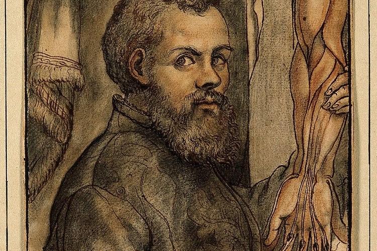 Portrait of Andreas Vesalius