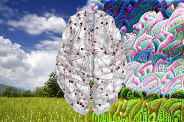 An artistic image of a white brain with red network connections