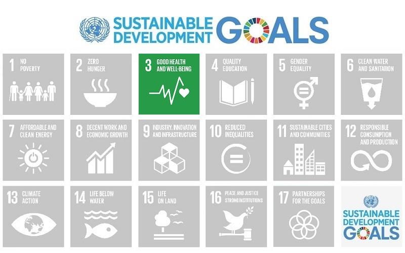 Sustainable Development Goal (SDG) 3