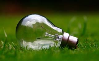 Light bulb on green grass