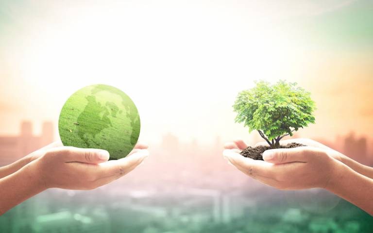 World environment day concept showing two hands holding tree and earth globe