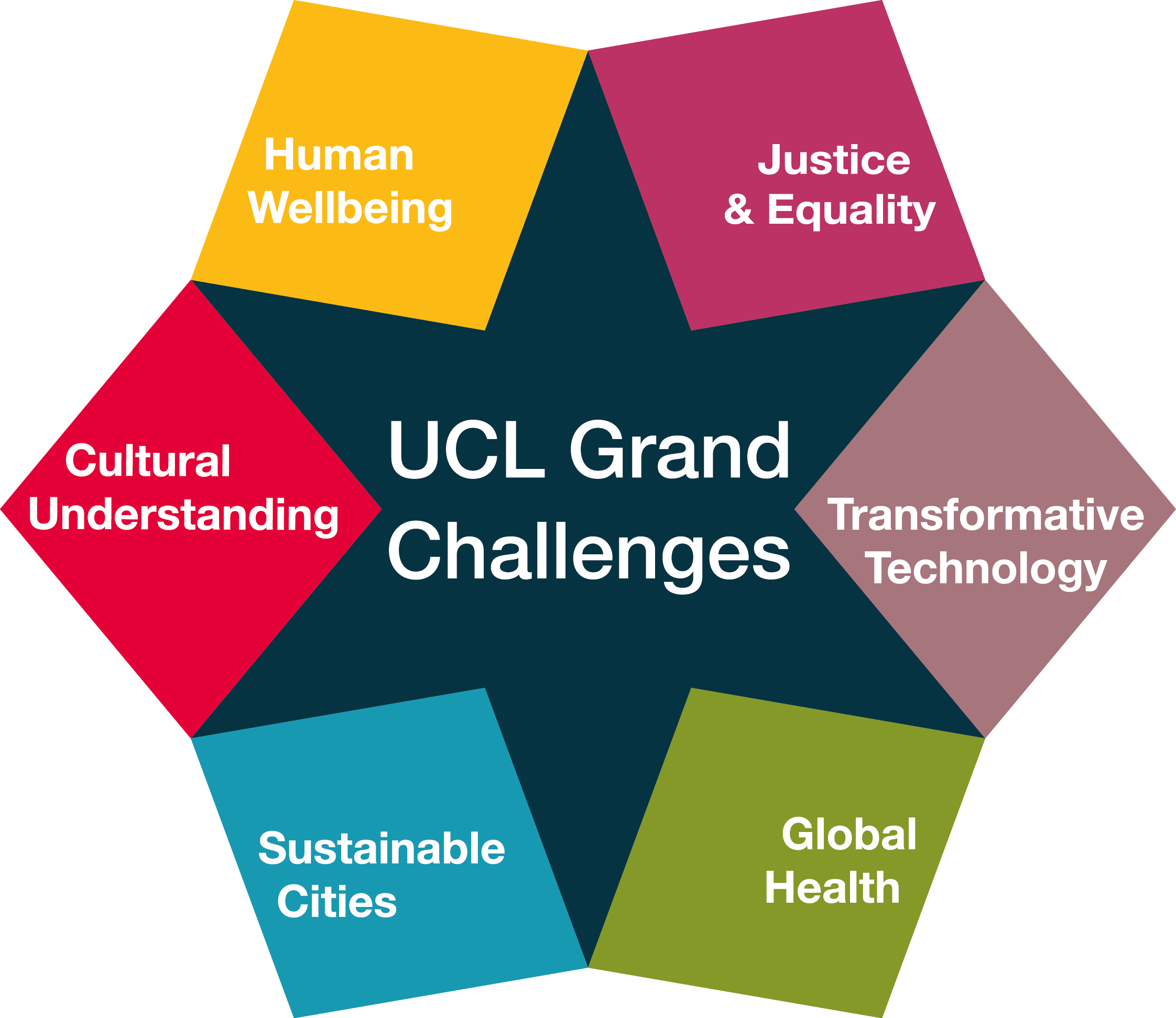 Image result for ucl grand challenges