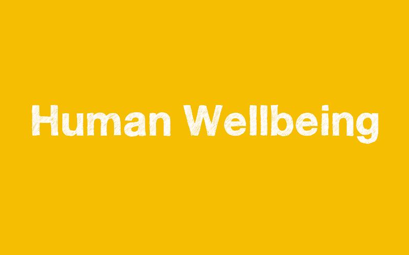 Human Wellbeing
