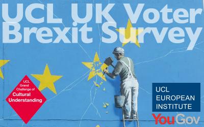 UK voter survey