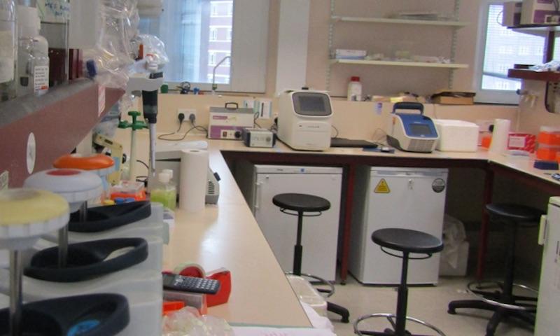 The Gupta Lab