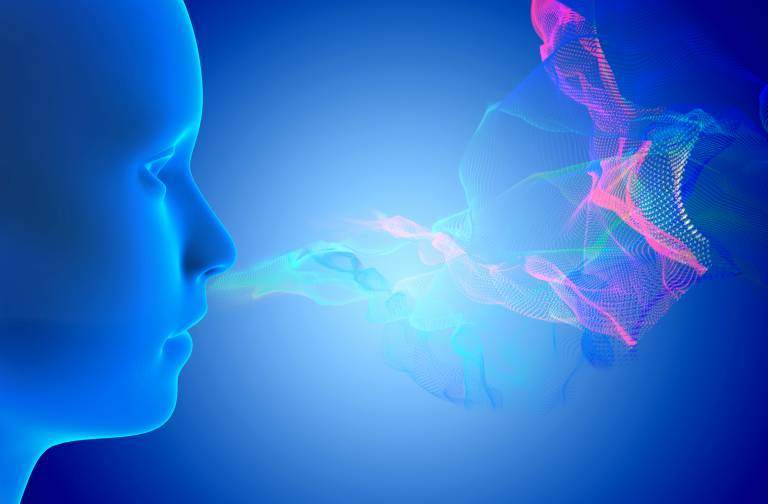 Smell - image of nose