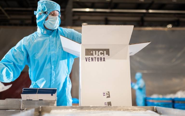UCL Ventura being packaged by a worker in PPE