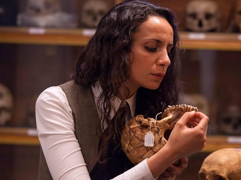 Examining a skull