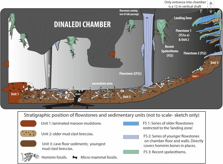 The Dinaledi Chamber of the Rising Star Cave System
