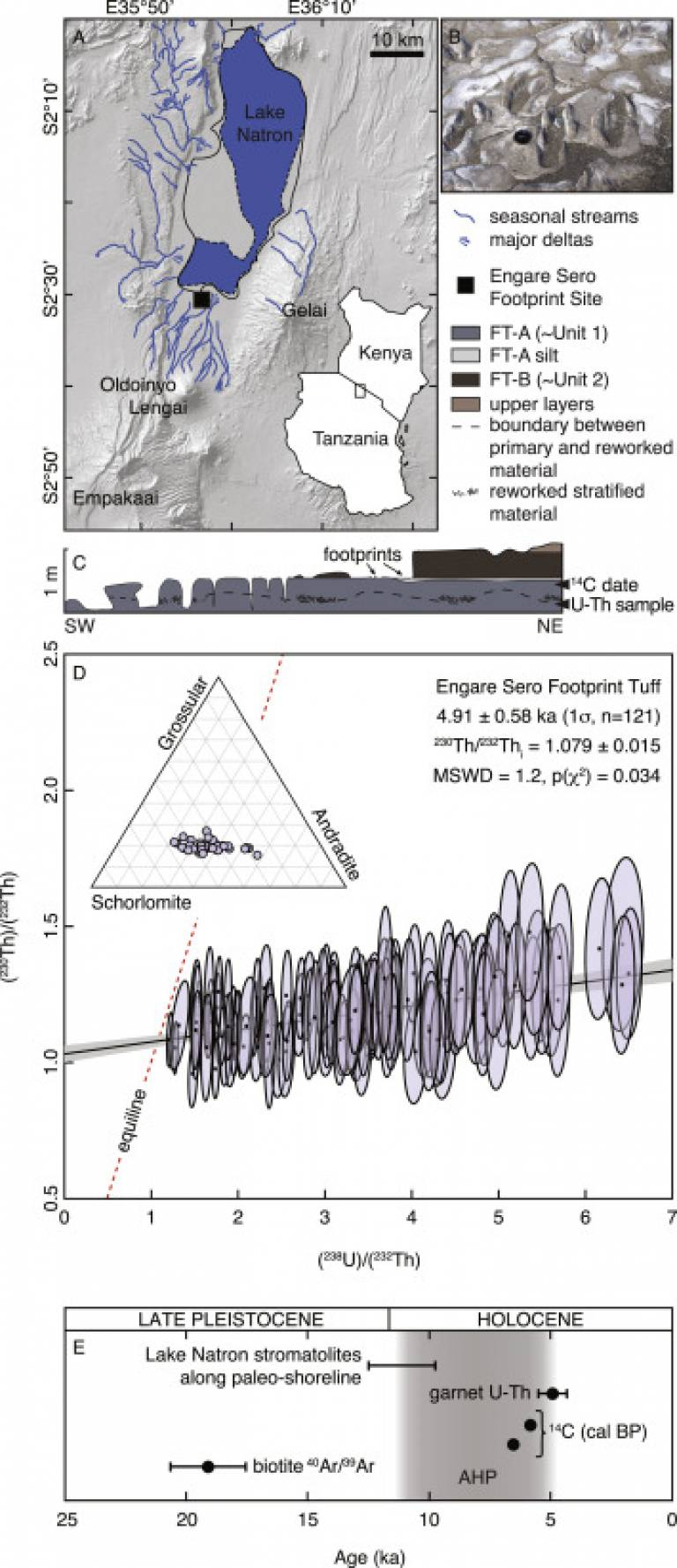 Geological and stratigraphic framework of the Engare Sero Footprint Tuff and U-Th isotope systematics of analysed garnets