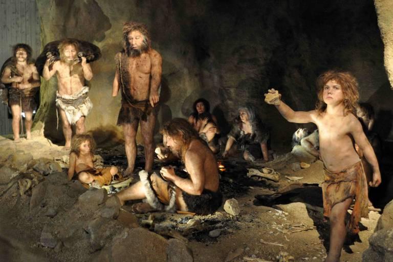 Homo neanderthalensis group
