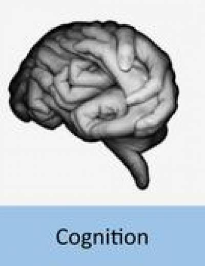 evolution_of_cognition