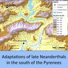 Adaptations of late Neanderthals in the south of the Pyrenees