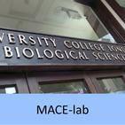 MACE-lab