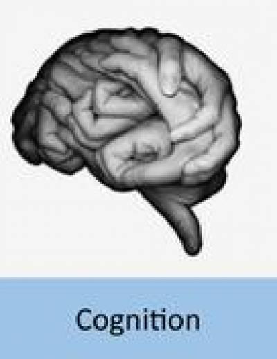 evolution_of_cognition
