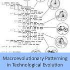 Macroevolutionary Patterning in Technological Evolution