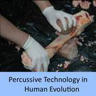 Percussive Technology in Human Evolution