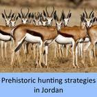 Prehistoric hunting strategies in Jordan
