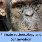 primate socioecology and conservation