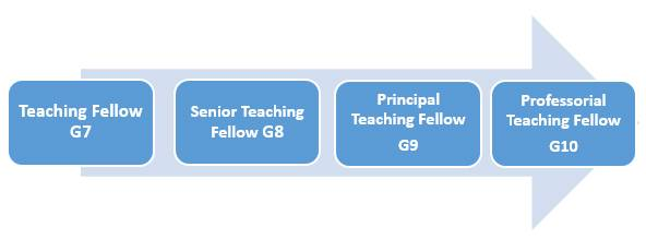 Academic promotions guidance for Teaching staff