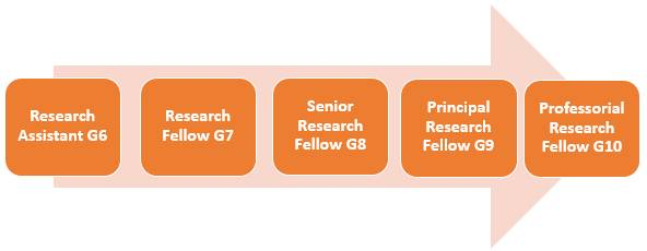 Standard academic promotion route. Research Assistant Grade 6, Research Fellow Grade 7, Senior Research Fellow Grade 8, Principle Research Fellow Grade 9, Professorial Research Fellow Grade 10