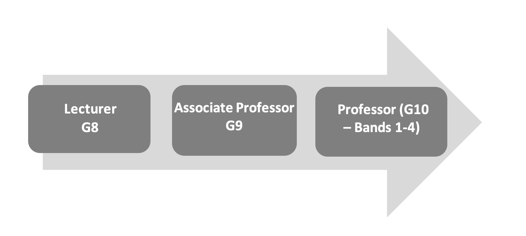 Standard academic promotion route. Lecturer Grade 8, Associate Professor Grade 9, Professor Grade 10 – bands 1-4