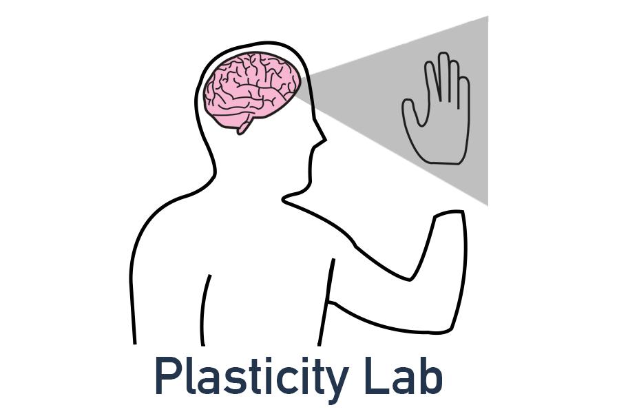 Plasticity teaser