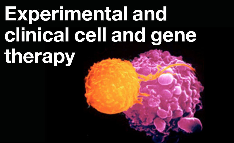 Experimental and clinical cell and gene therapy