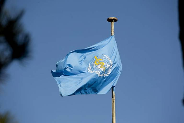 World Health Organization (WHO) Flag