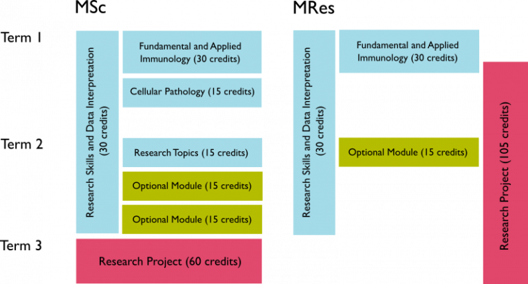 Image showing programme structure