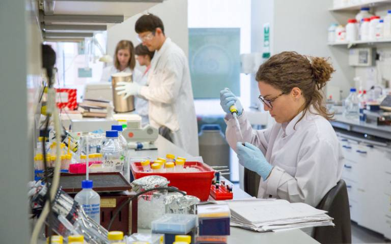 Image of researchers working in laboratory