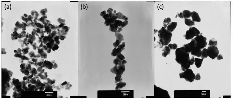 TEM morphology of LTA calcining at different temperatures.jpg