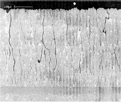 Column-like structure of ESAVD processed TBC coating.jpg
