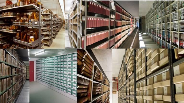 archive vortex