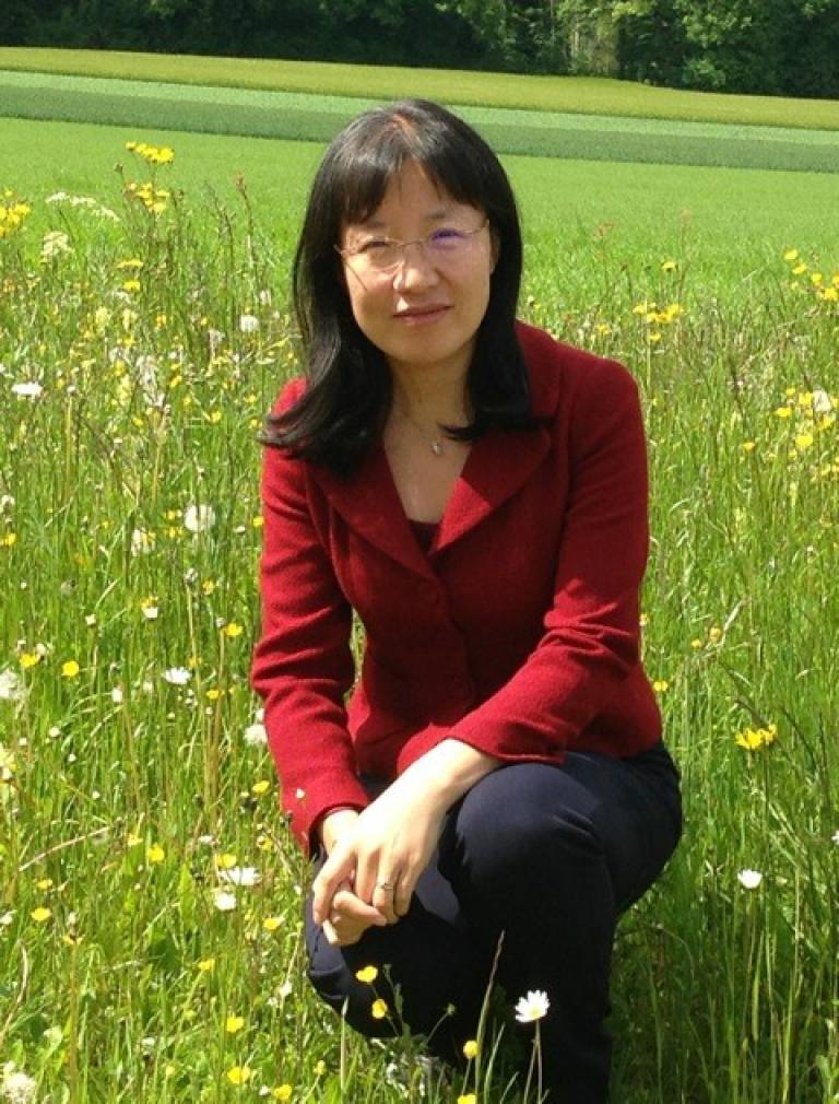 Dr Xiurong Zhao