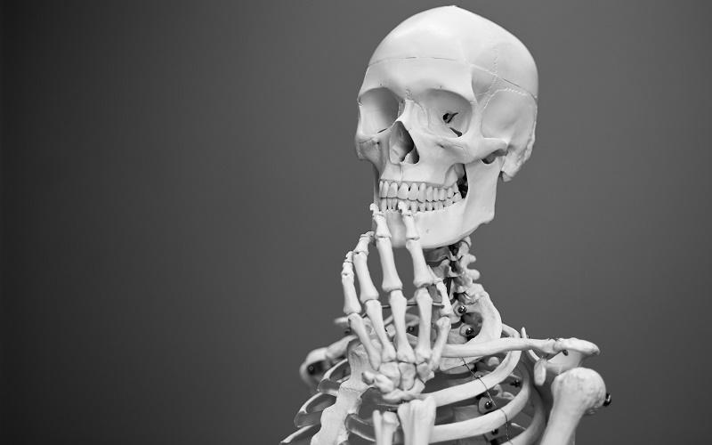 skeleton in thinking pose, image credit Mathew Schwartz on Unsplash