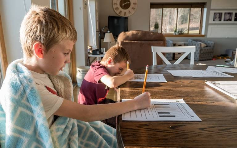 Brothers doing schoolwork at home