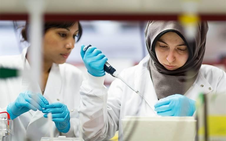 Students doing laboratory experiment. Image: Alejandro Walter Salinas Lopez for UCL Digital Media