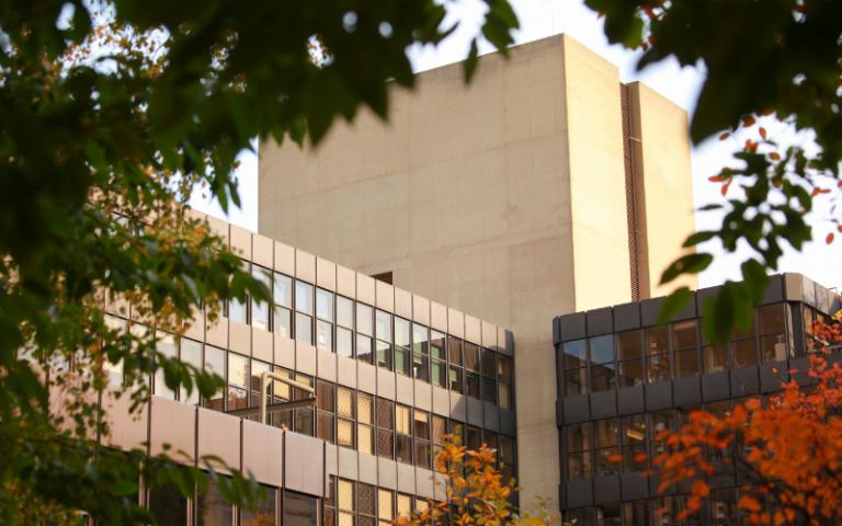 Institute of Education in autumn