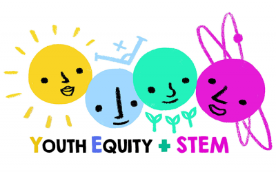 Youth Equity Science Technology Engineering Maths Project