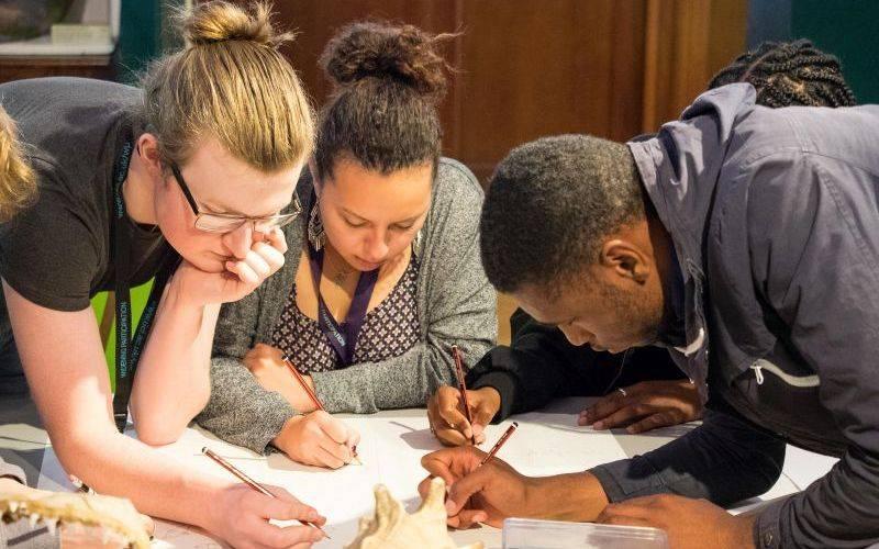 Doctoral students working together. Image: Kirsten Holst for UCL Digital Media