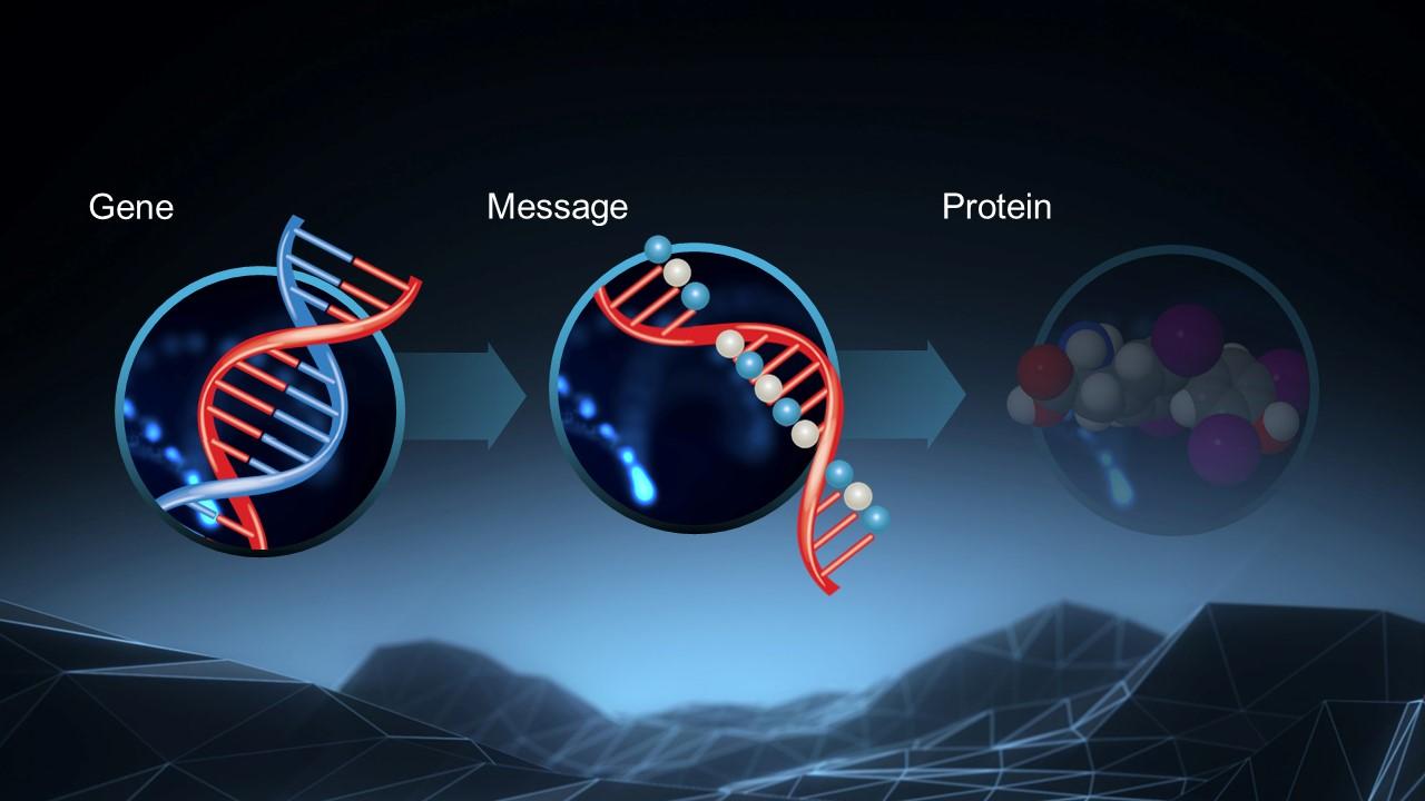 gene lowering image
