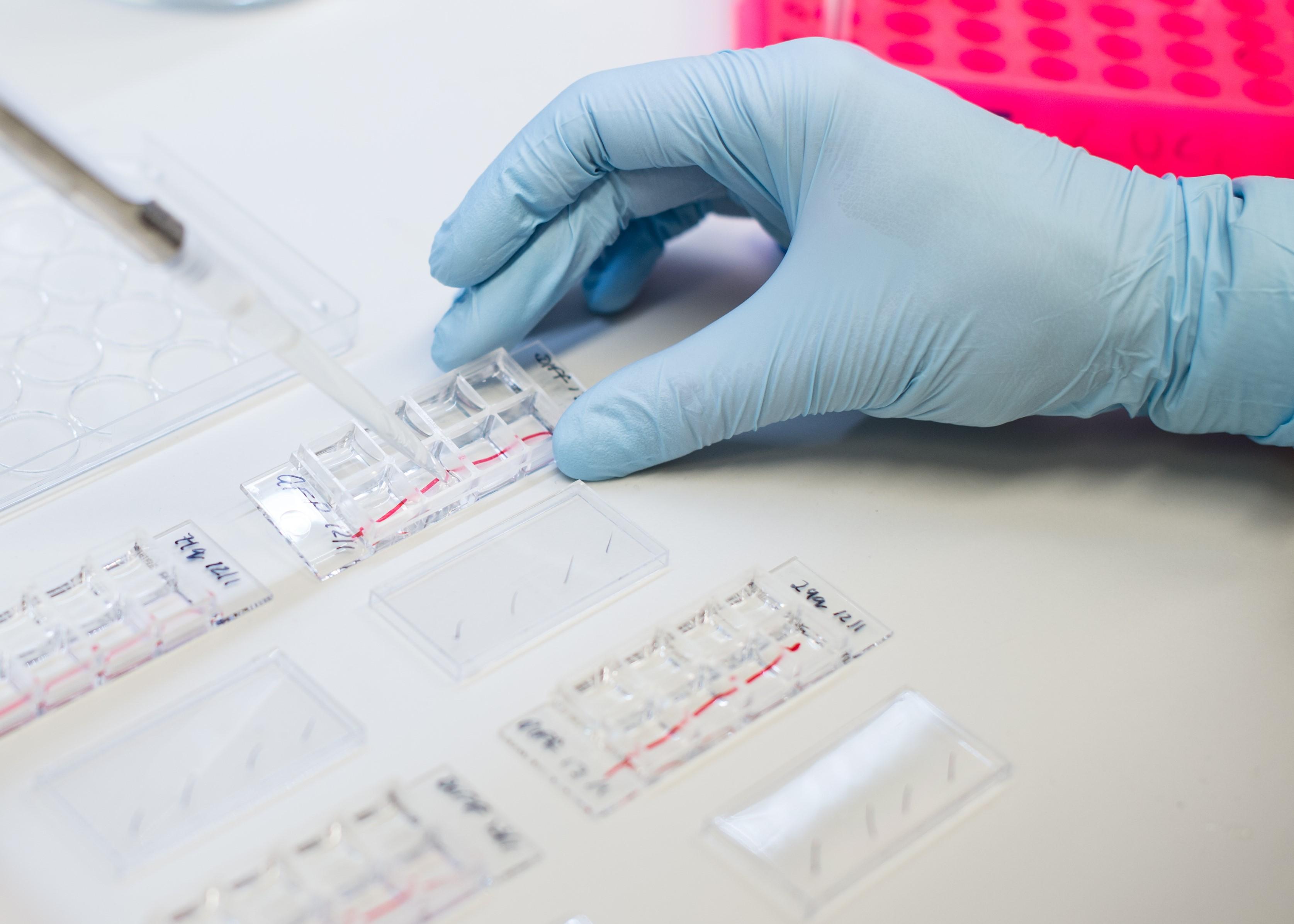 HDC lab image
