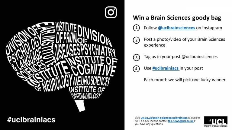 brainiacs instagram competition