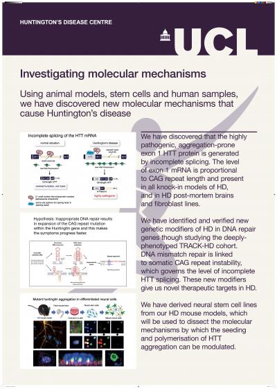 HD molecular poster