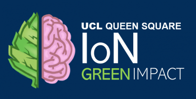 IoN green logo