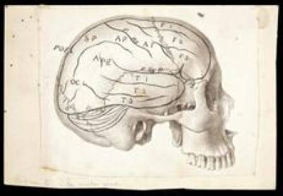 Drawing by Sir William Gowers