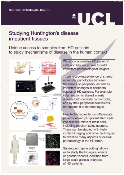 HD in patient tissue poster